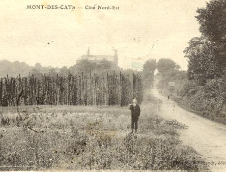 Houblonniere Brasserie du Mont des Cats - bière trappiste française